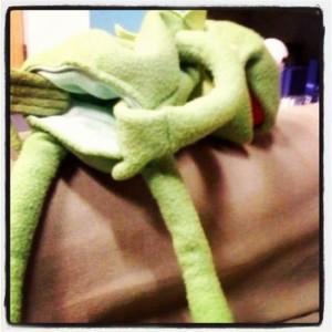Kermit Flashing